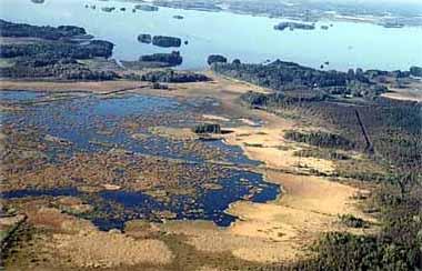 igenväxande sjö