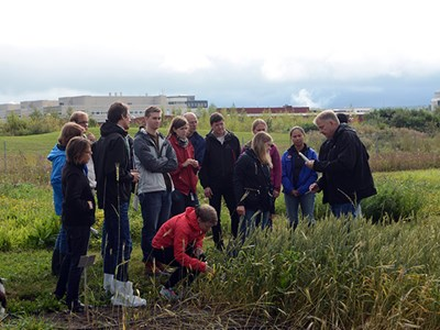 Workshop för lärare om växtpatologi